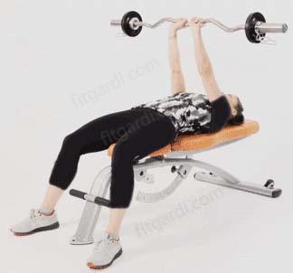 بهترین حرکات ورزشی برای سفت شدن پشت بازو